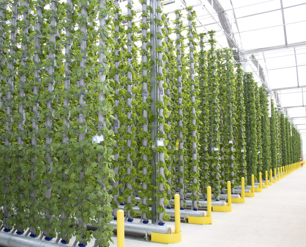 Vertical Farms from Eden Green